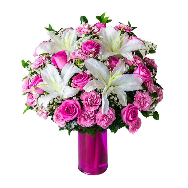 Flower Advisor - Roseate Kiss