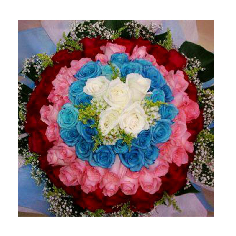 Flower Advisor - Floral Rainbow