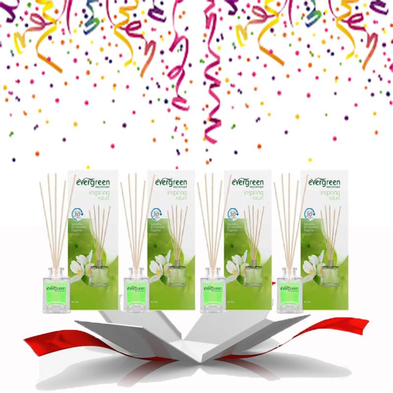 Evergreen Reed Diffuser Set Inspiring Nature 30 ml (4pcs)