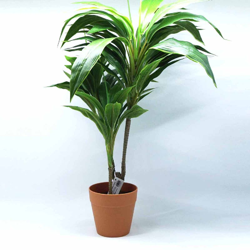 L-Living Mini Dracnea Artificial 70Lvs