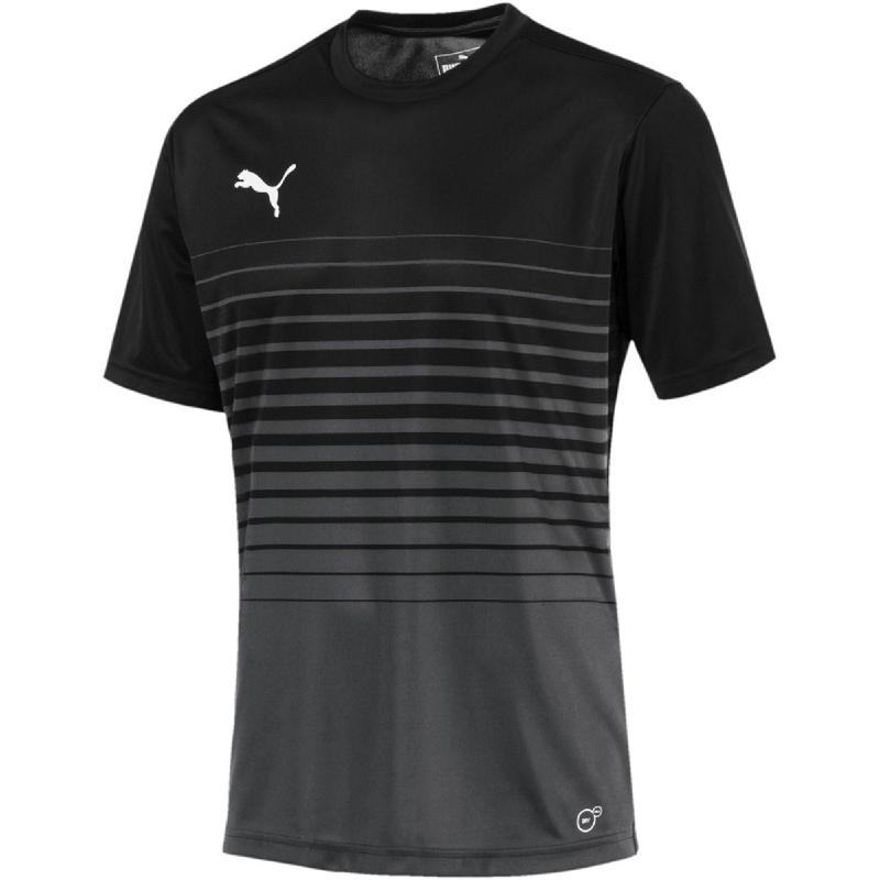 Puma Ftblplay Graphic Shirt Asphalt-Blac