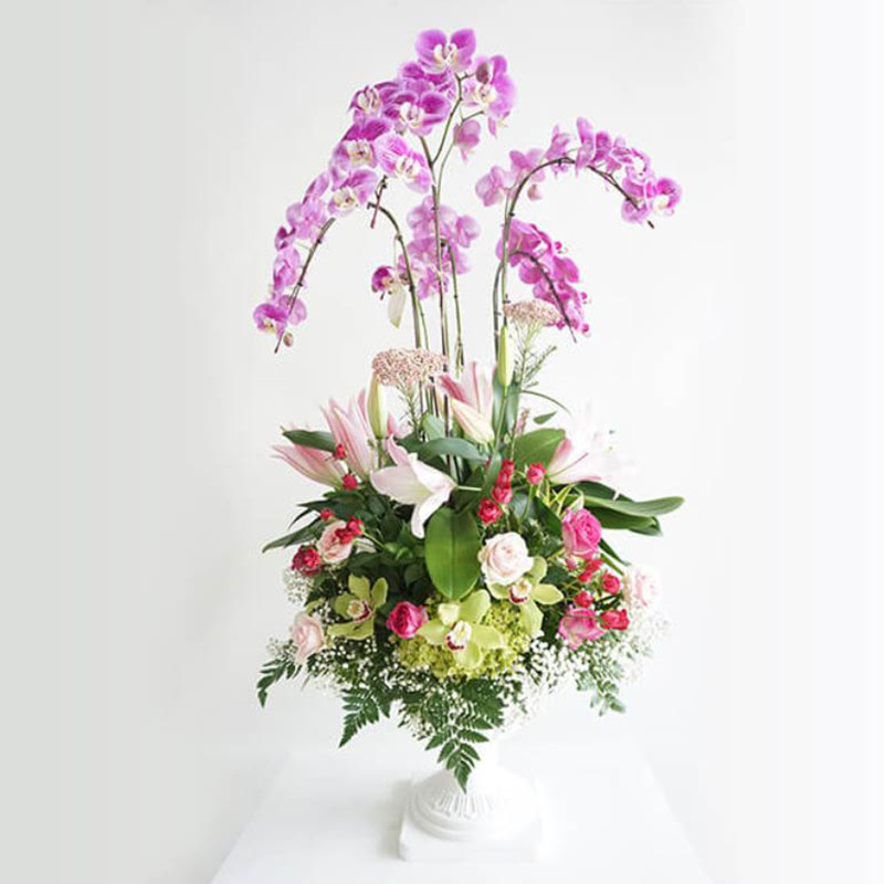 Flower Advisor - Classic Diana