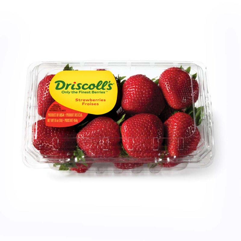 Driscolls Strawberry Jumbo 1 Pack