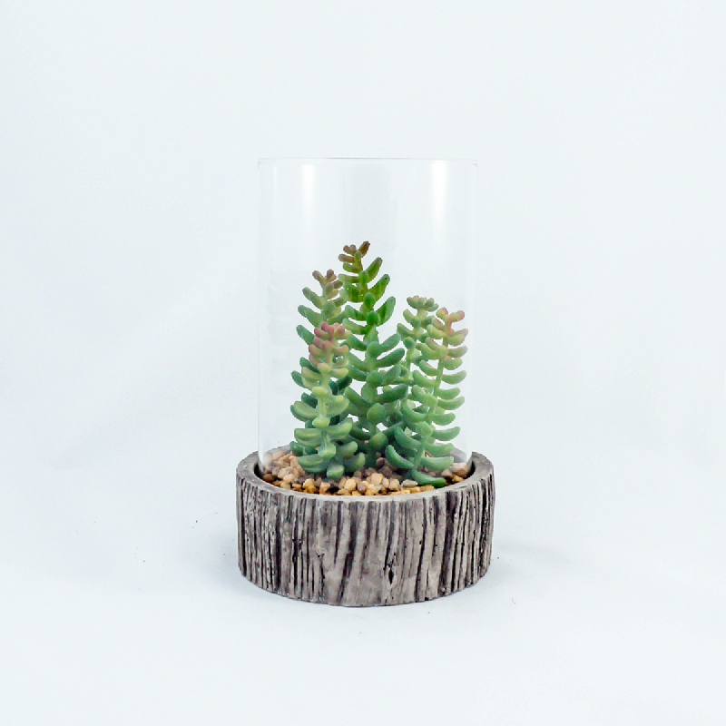 Asna Decorative Artificial Plants in Clear Glass