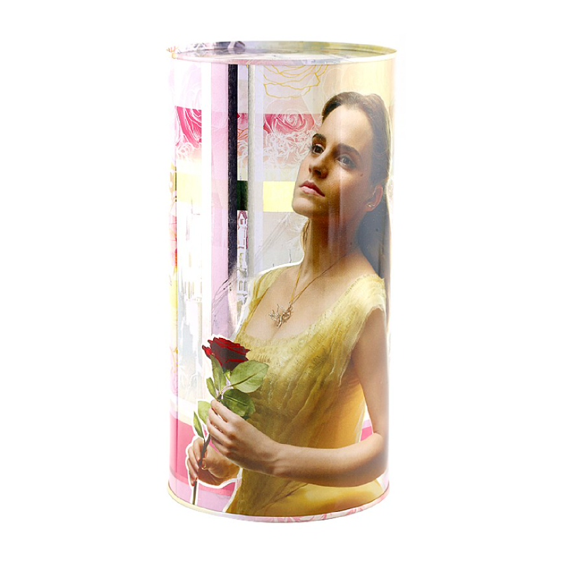 Princess Tin Can Beauty And The Beast 116X230Mm Style 3