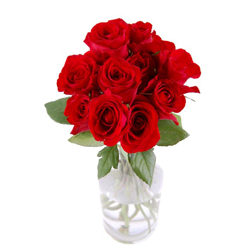 Flower Advisor - Dozen Red Roses