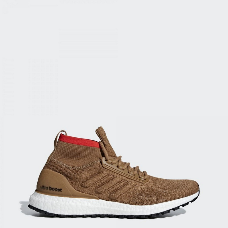 Adidas Ultraboost All Terrain CM8258