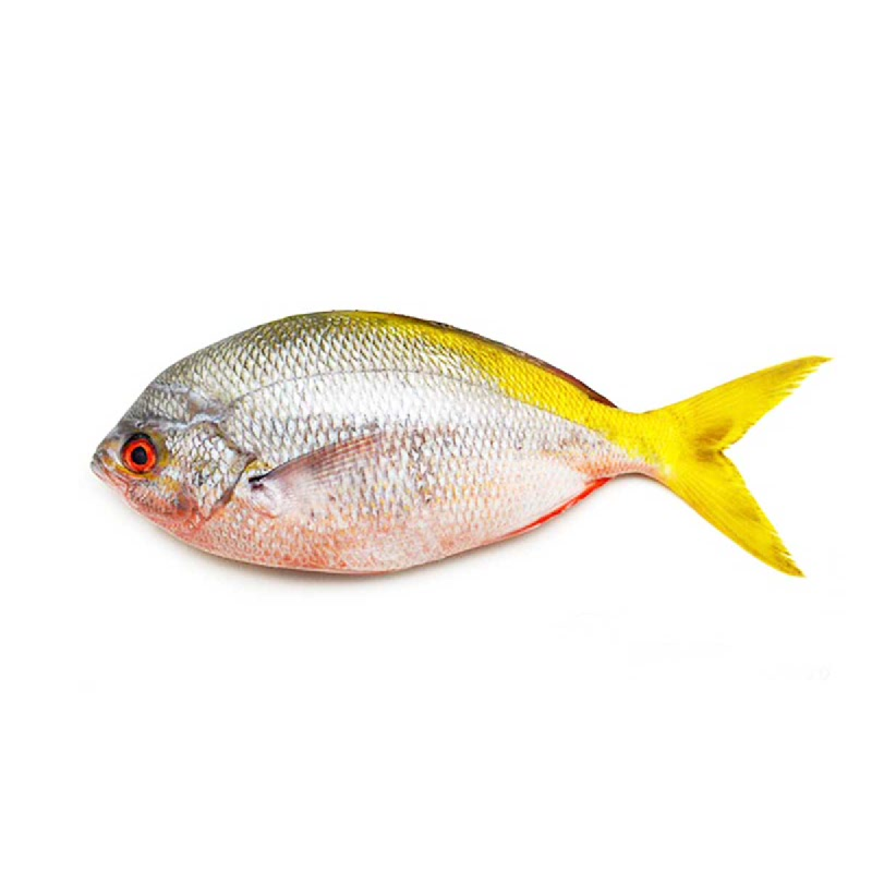 Lotte Mart Ikan Ekor Kuning 1 Kg