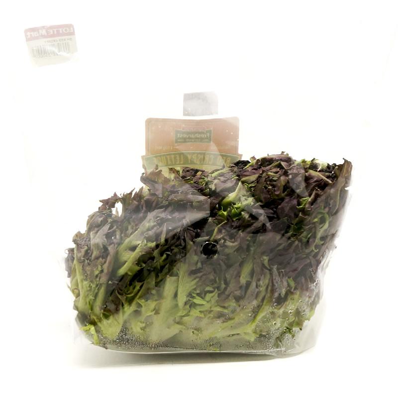 Lotte Mart Red Crispy Lettuce 110 Gr Per Pack