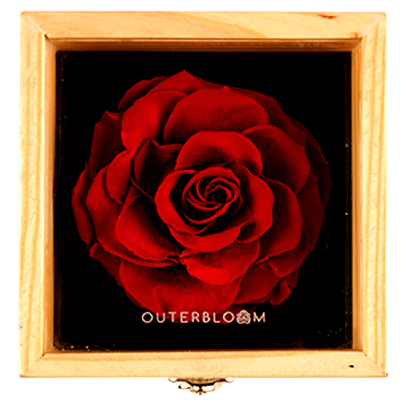 Outerbloom - Heritage Box Passionate Red