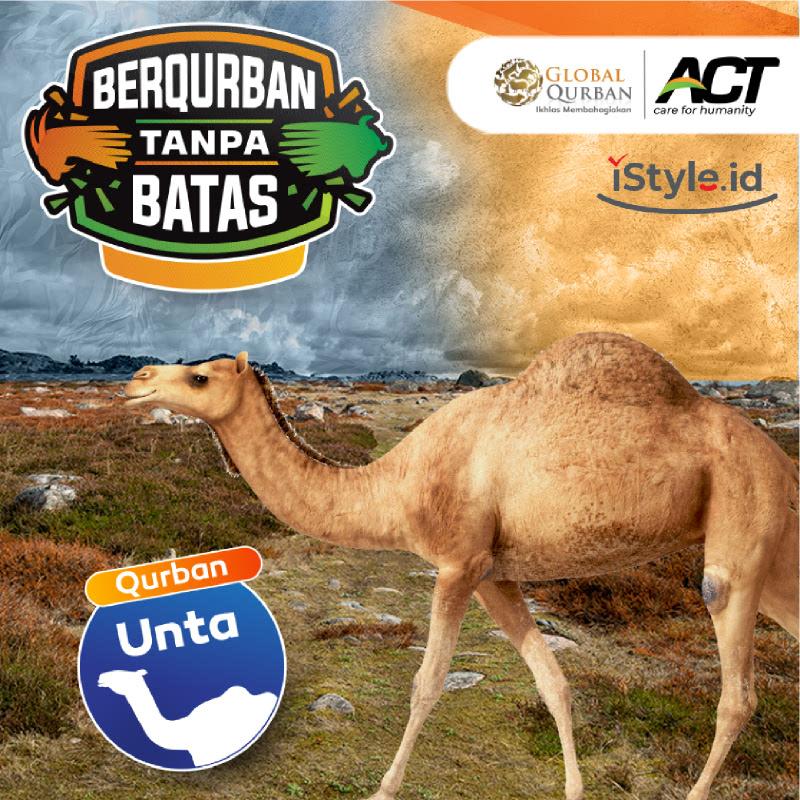 ACT - Qurban Unta