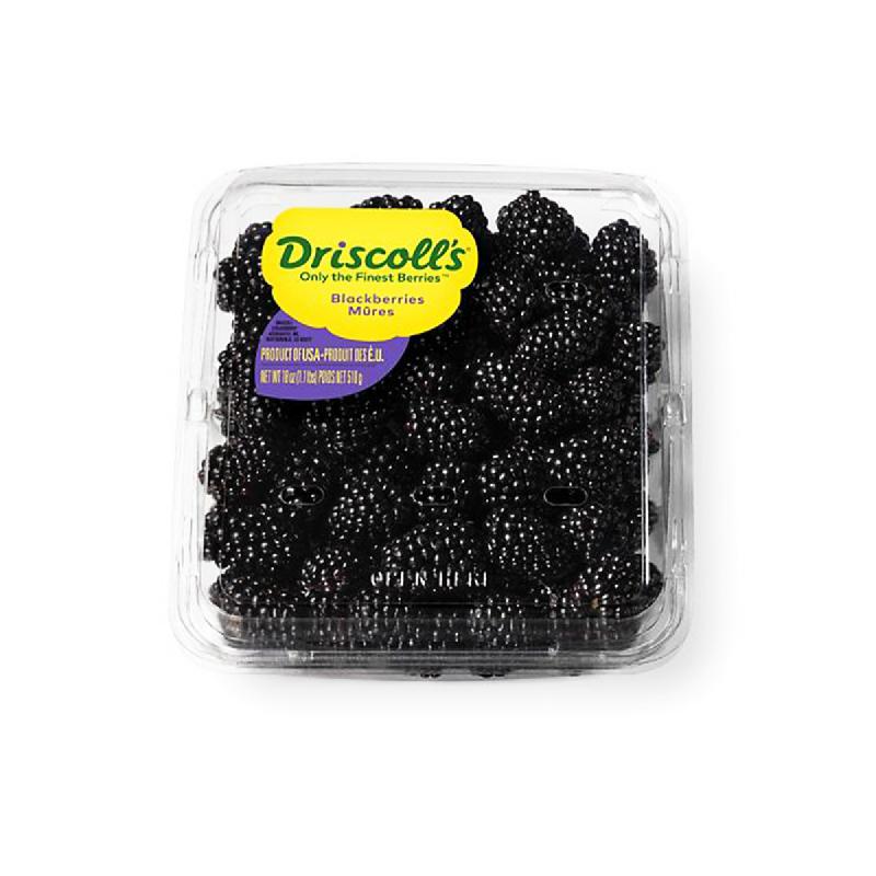 Driscolls Blackberry 1 Pack