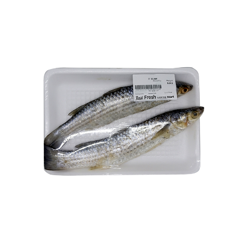 Blessing Fish Ef Ikan Belanak 1 Kg [6 - 8 Ekor Per Kg]