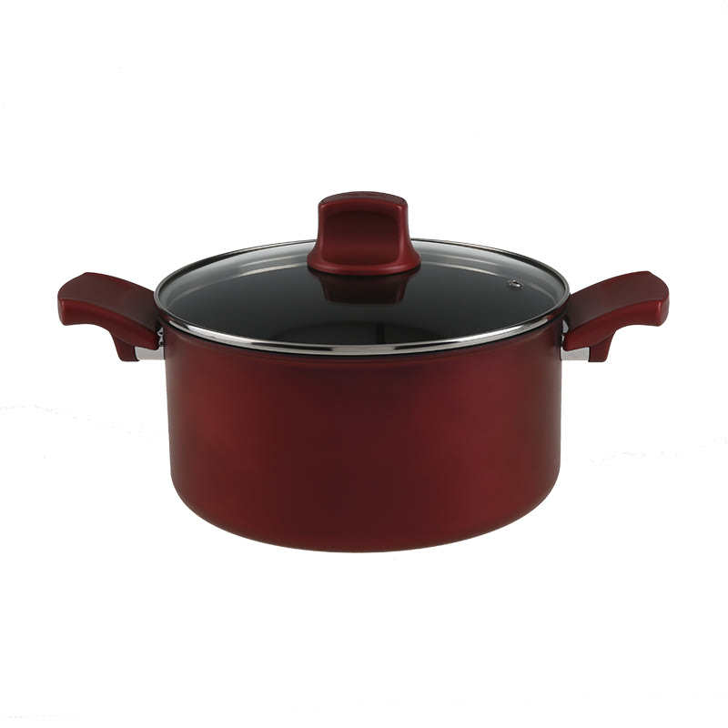 Tefal Character Stewpot 24 cm with Lid