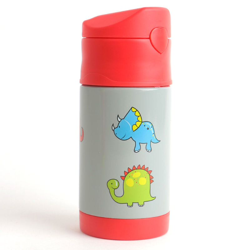 Stainless Water Bottle Dino