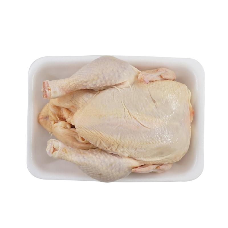 Ayam Boiler 1 Ekor