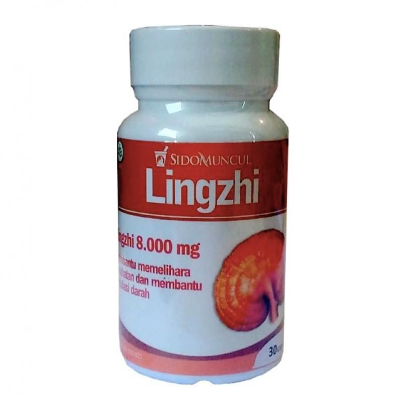 Lingzhi - 30 Kapsul