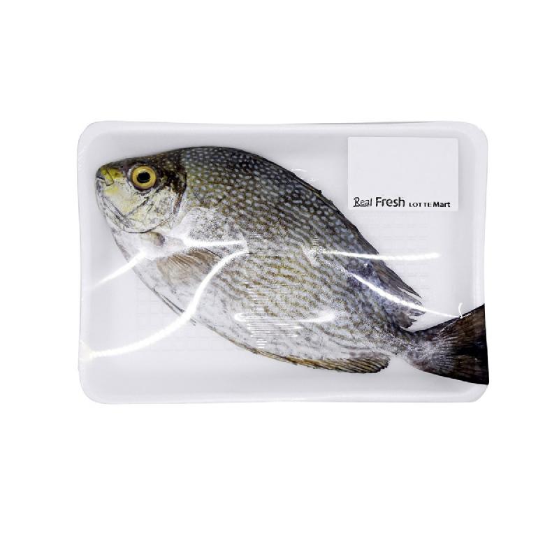 Blessing Fish Ikan Baronang 1 kg [3 - 4 Ekor Per Kg]