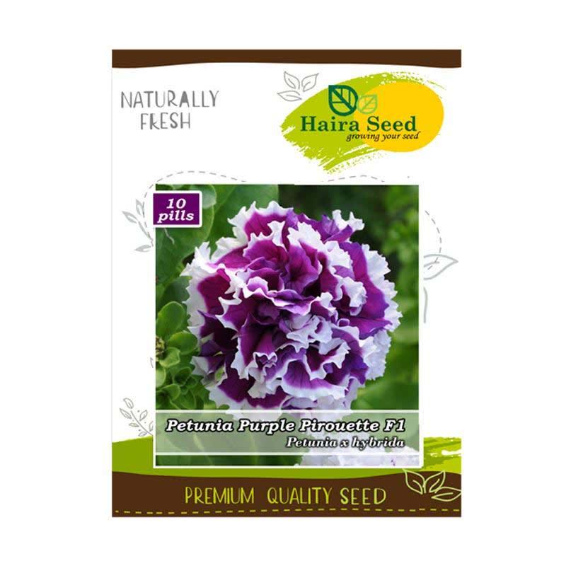 Haira Seed Benih-Bibit Bunga Petunia Purple Pirouette F1